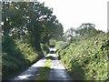 Leafy lane off the N51 between Navan & Slane at Dunmoe