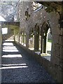 Cloisters at Bective Abbey