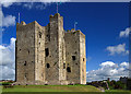 Castles of Leinster: Trim, Meath