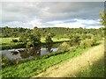 Boyne near Knowth