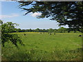 Countryside at Rathcarran, Co. Meath